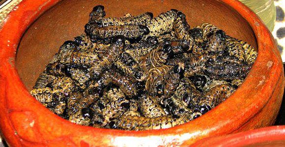 Zimbabwean Cuisine