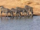 When to visit Zimbabwe