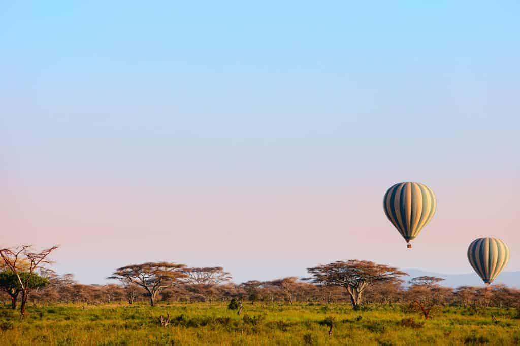 Go on a balloon safari