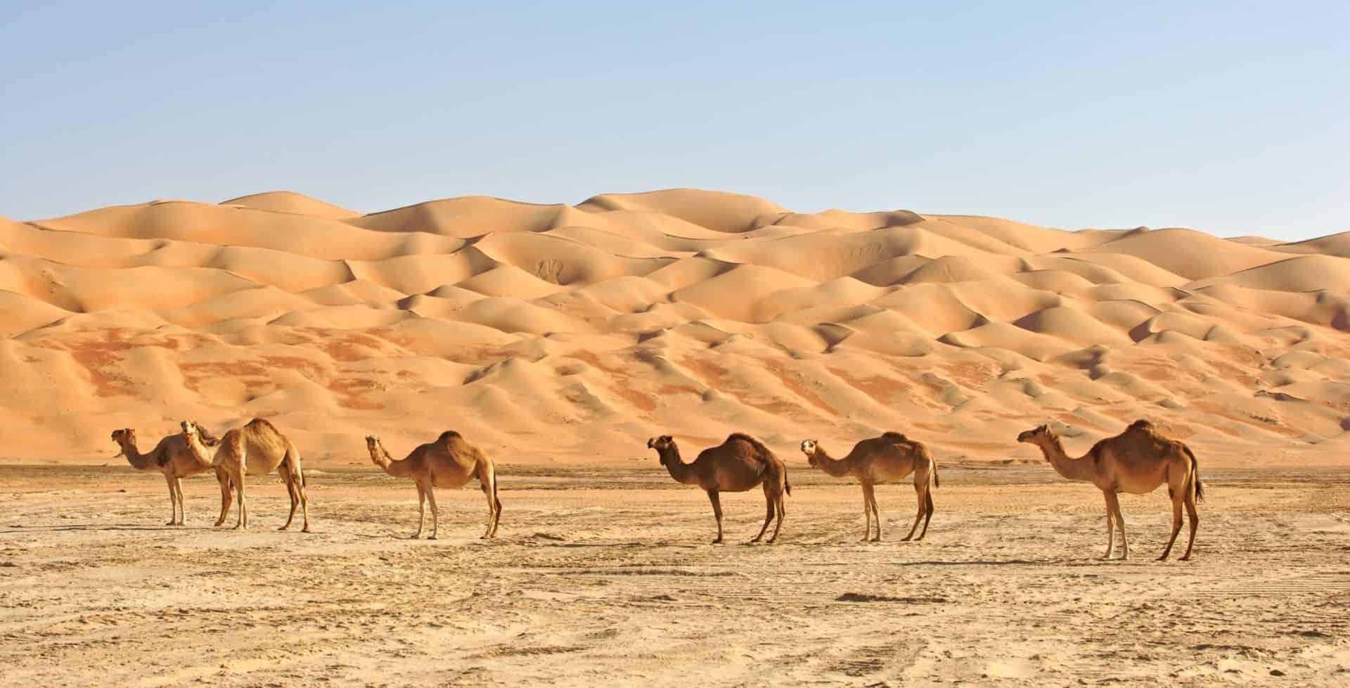 Rub' al Khali (The Empty Quarter)