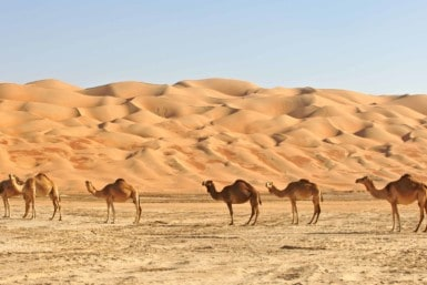 Rub' al Khali (The Empty Quarter)