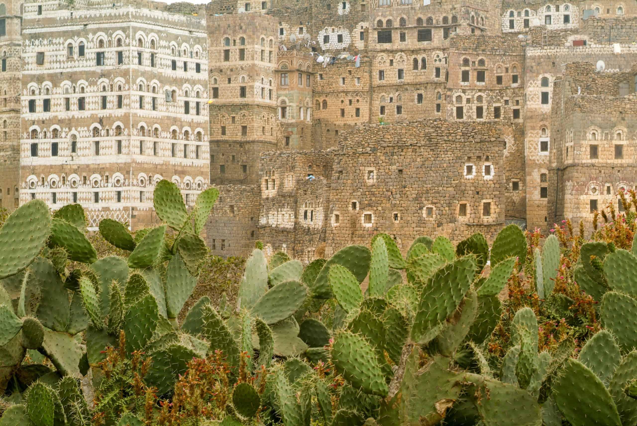 When to Visit Yemen