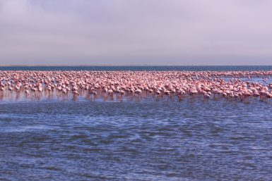 Swakopmund and Walvis Bay
