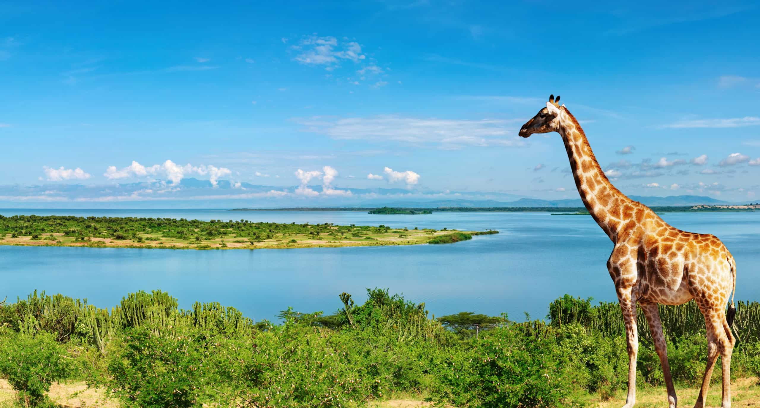 Ten Interesting Facts about Uganda