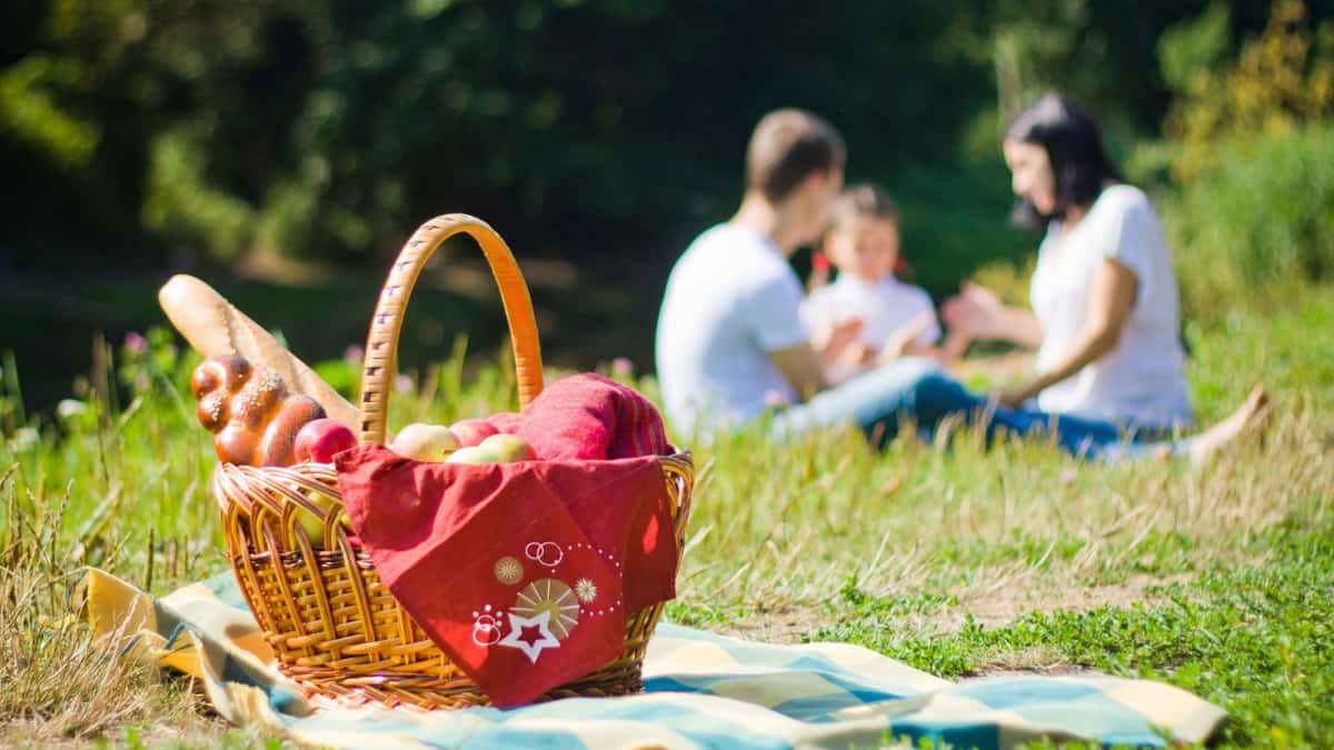 Take a picnic on the banks of the Azumini Blue River