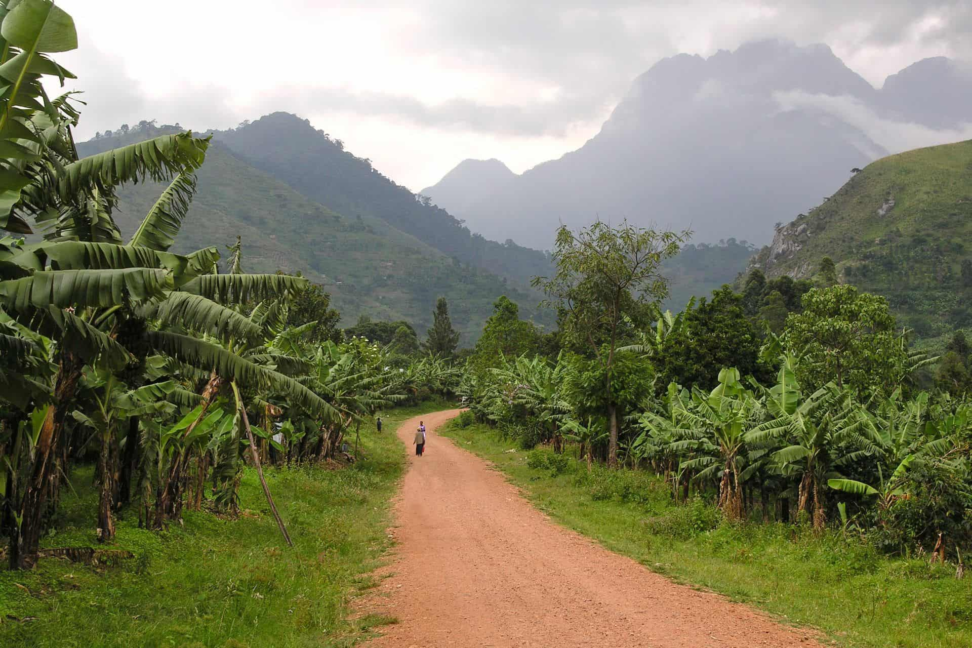 Rwenzori Mountain Ranges