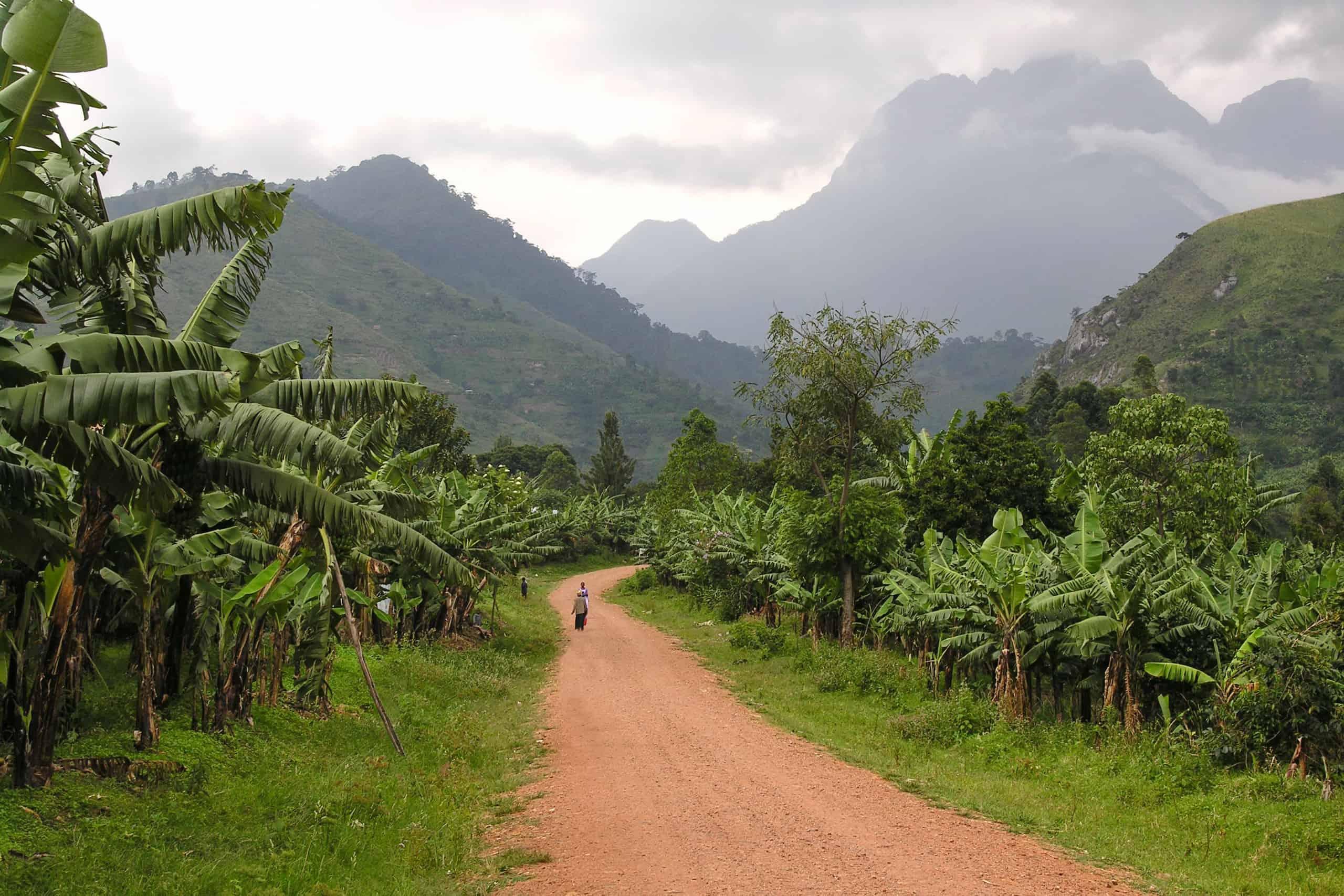 Where to go in Uganda