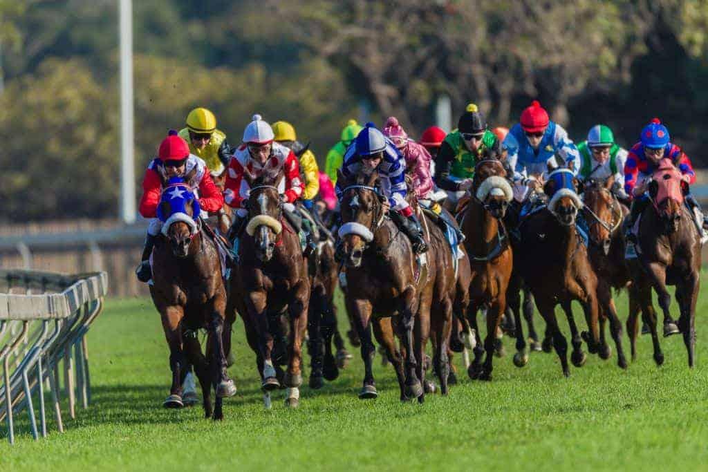 Watch horse racing in Happy Valley