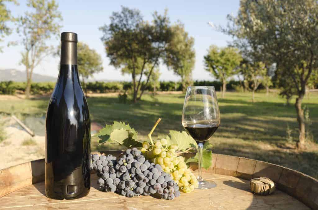 Follow the wine route