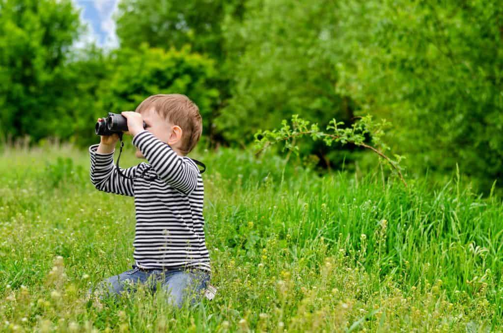 Birdwatching on Long