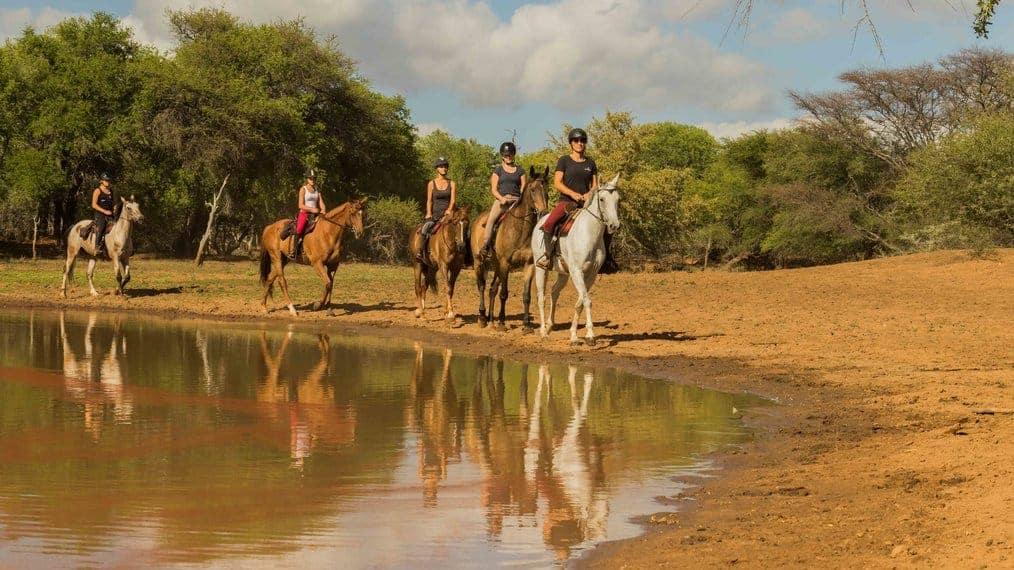 Join a horseback safari