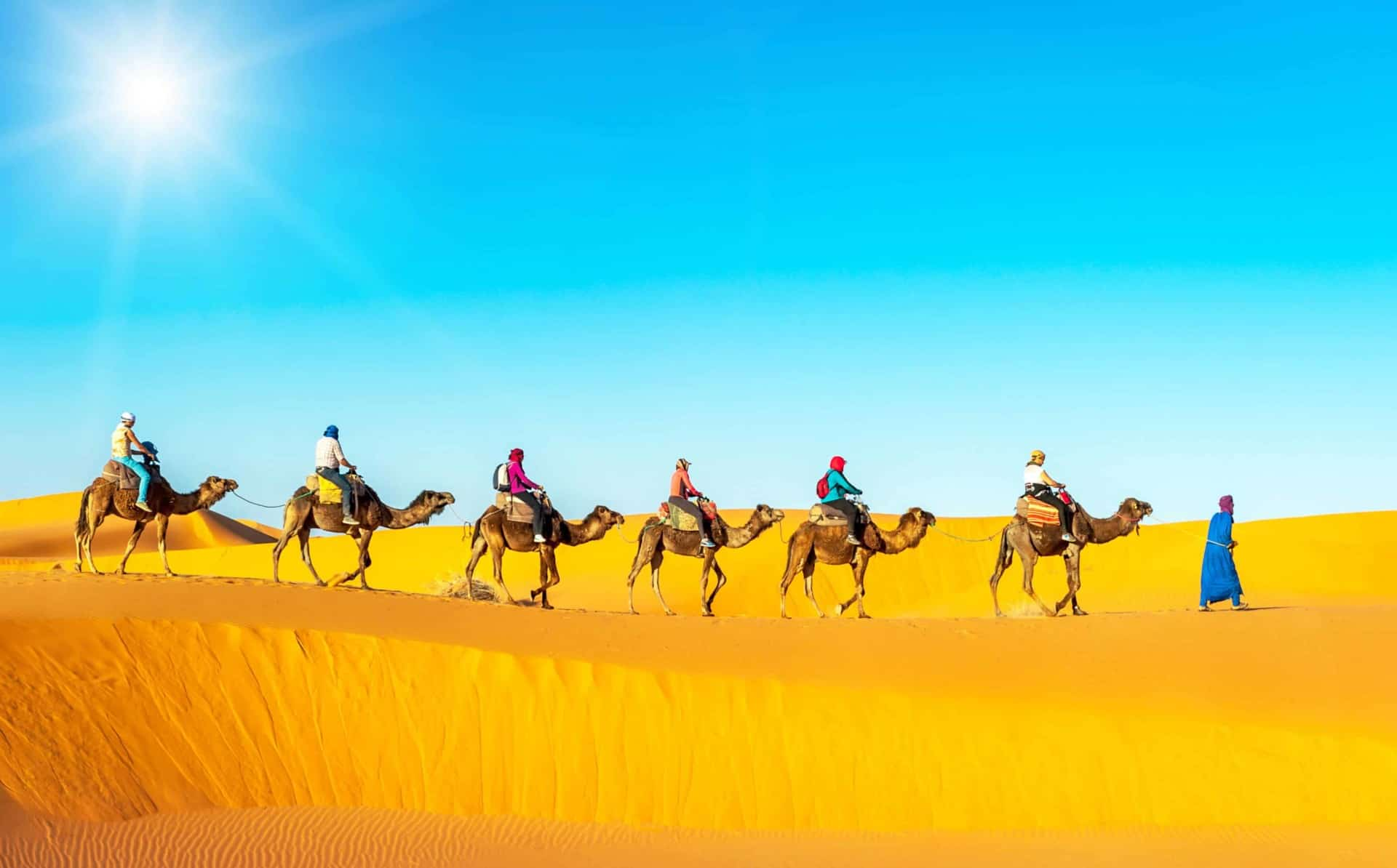 Explore the Sahara