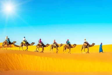 Explore the Sahara