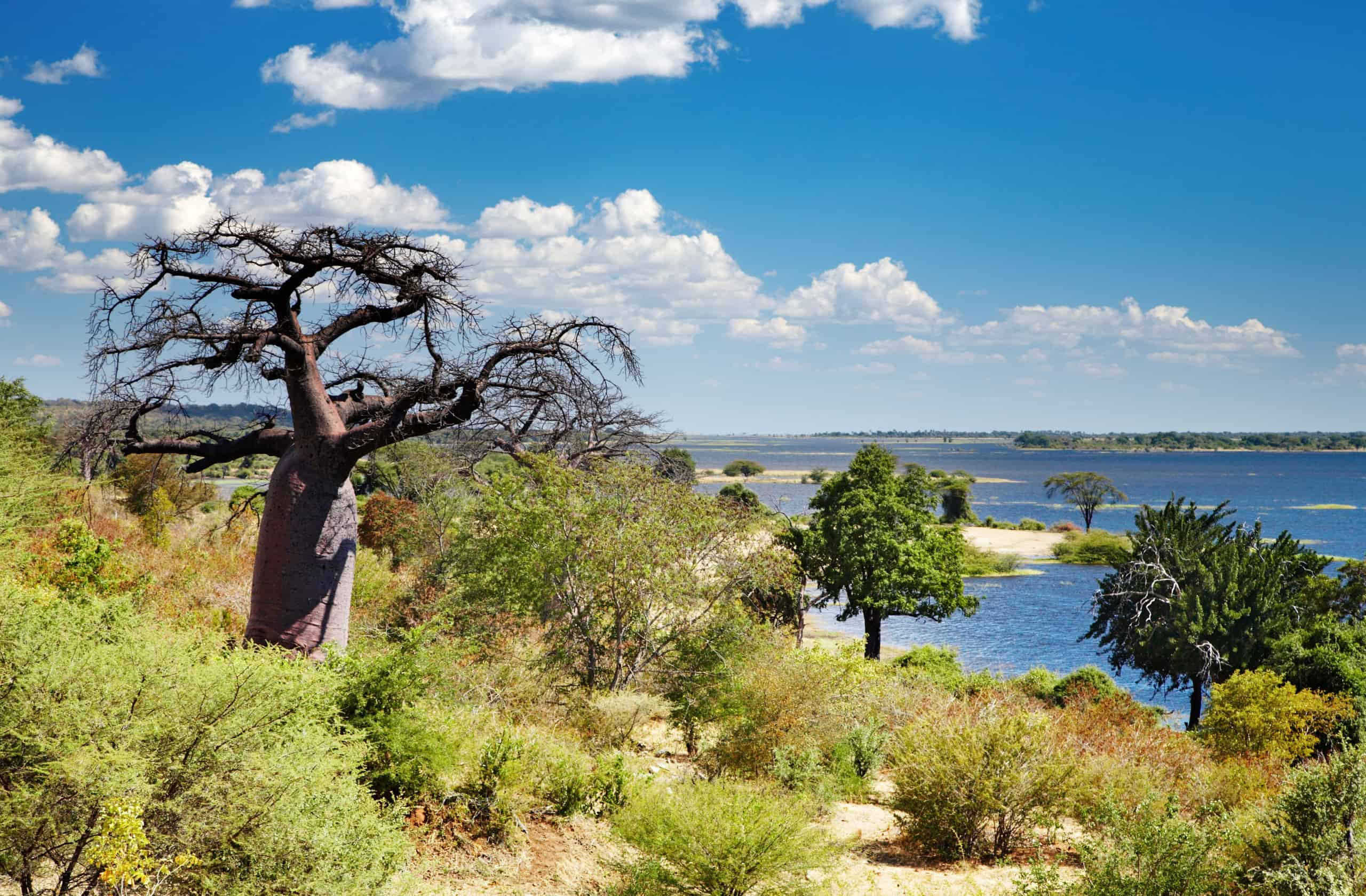 Ten interesting facts about Botswana