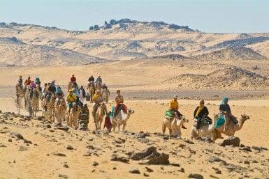 Take a camel ride on the Sahara