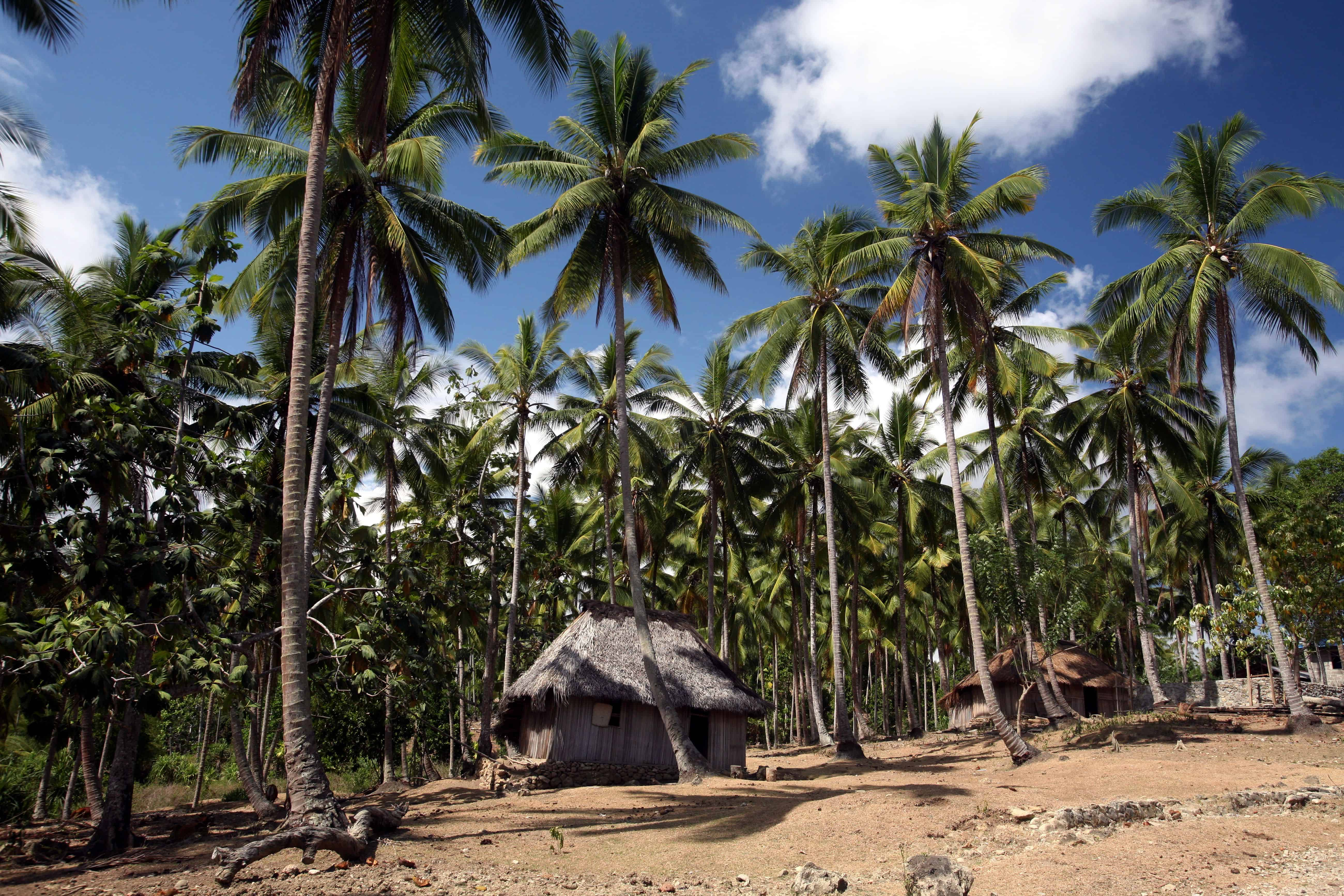 When to go to East Timor