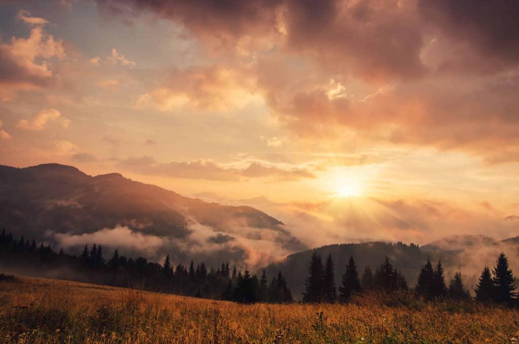 Mist-covered Sunrise in Viru Bog