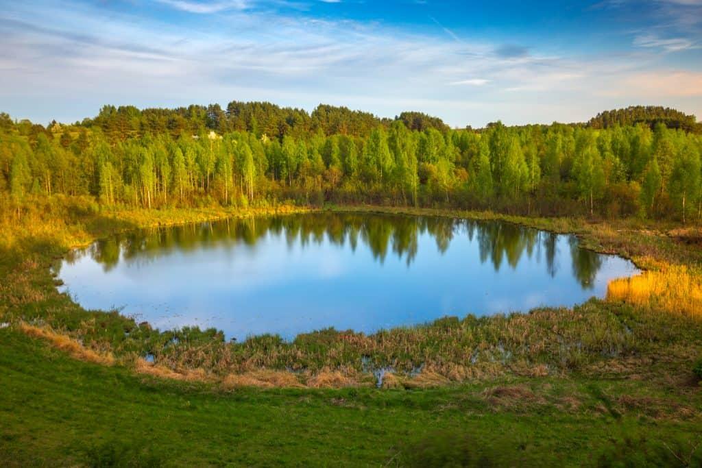 Banks of the Braslav Lakes